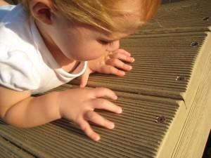 spotting a ladybug