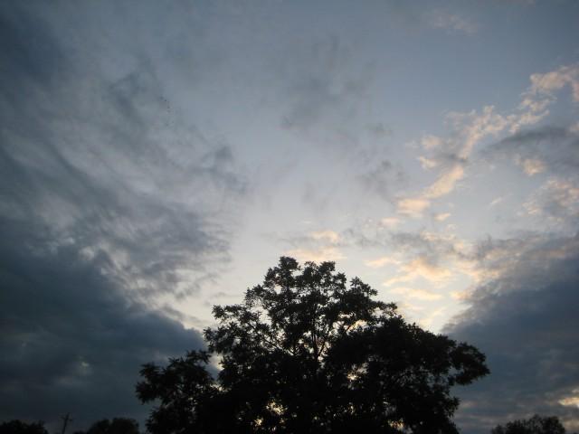 sd sky